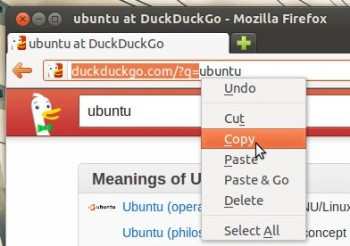 Copying-the-search-URL-for-Duckduckgo