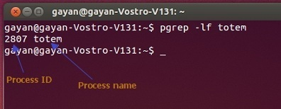 Process-name-and-ID-of-Totem