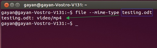 file-utility-running-in-Ubuntu