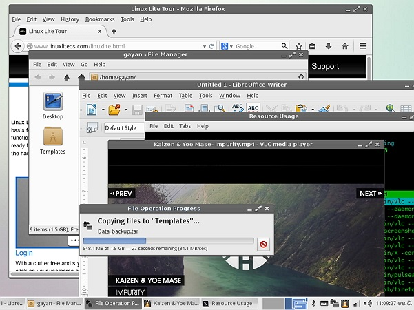 System responsiveness test running on Linux Lite 2.2