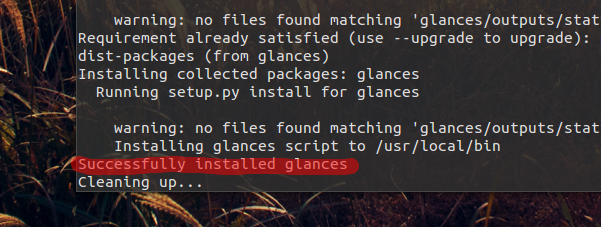 Glances 2.5.1 installation success message (Ubuntu 15.10)