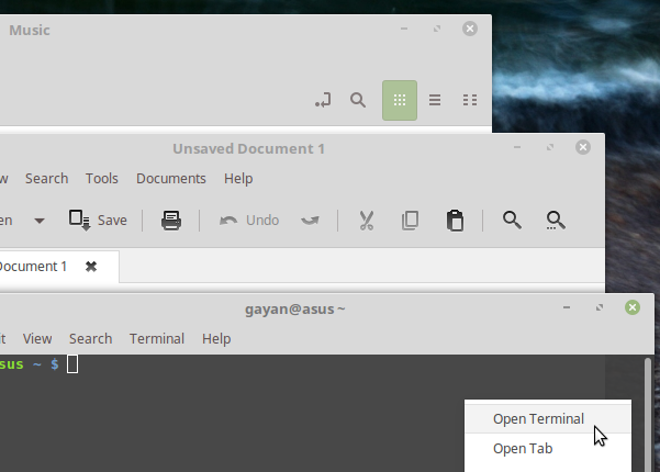 Mint-Y theme featuring on few user applications (Linux Mint 18)